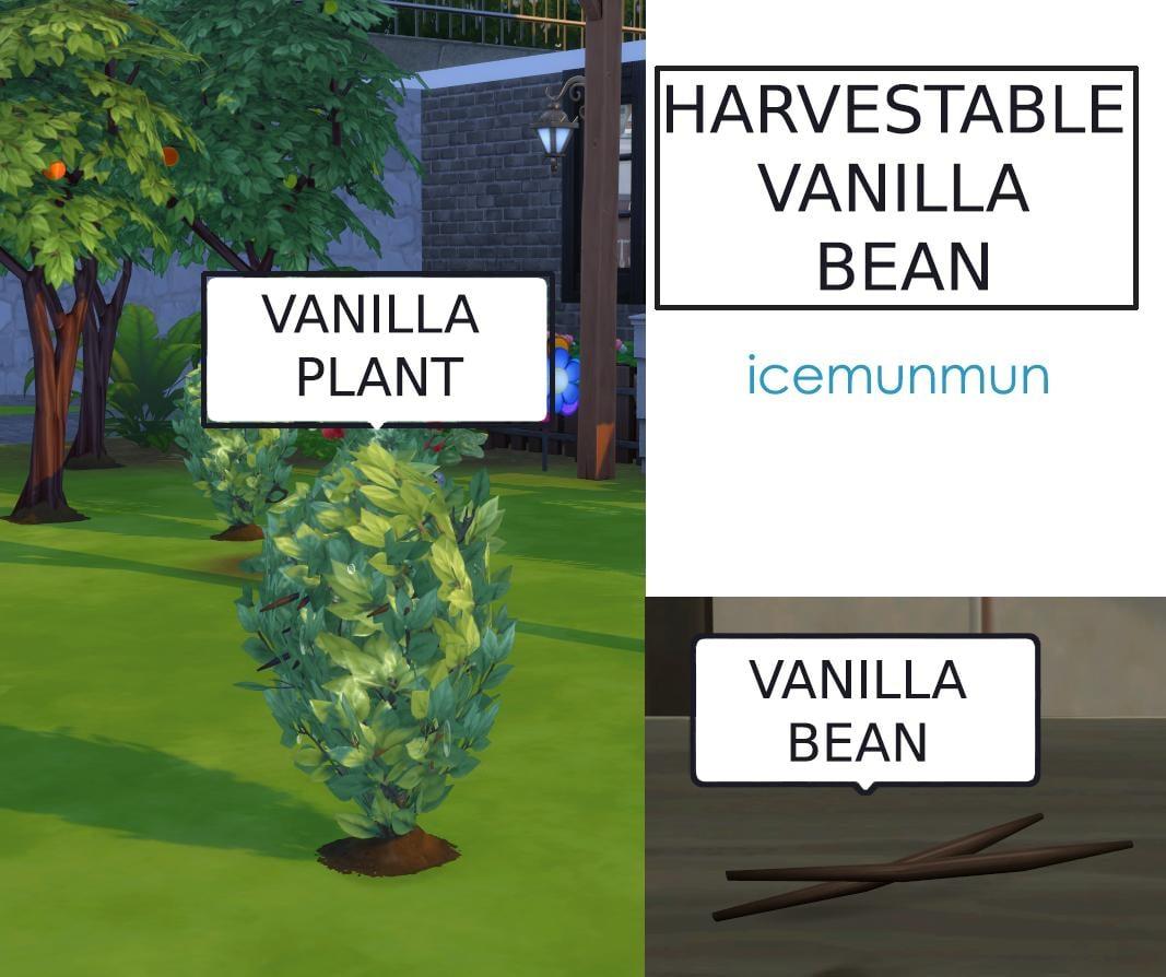 Custom Harvestable Vanilla Bean + Recipe Overrides (Updated 16th Oct 2019)
