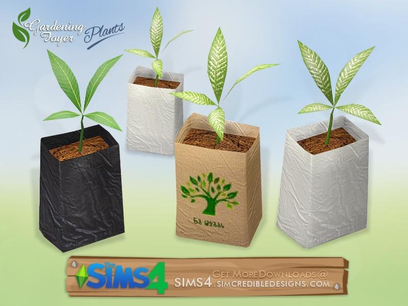 Gardening Foyer plants - seedling bag