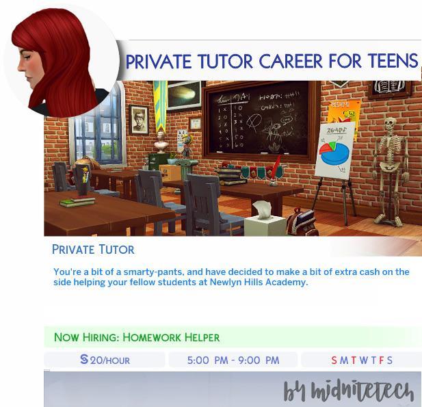 PRIVATE TUTOR CAREER (TEENS)
